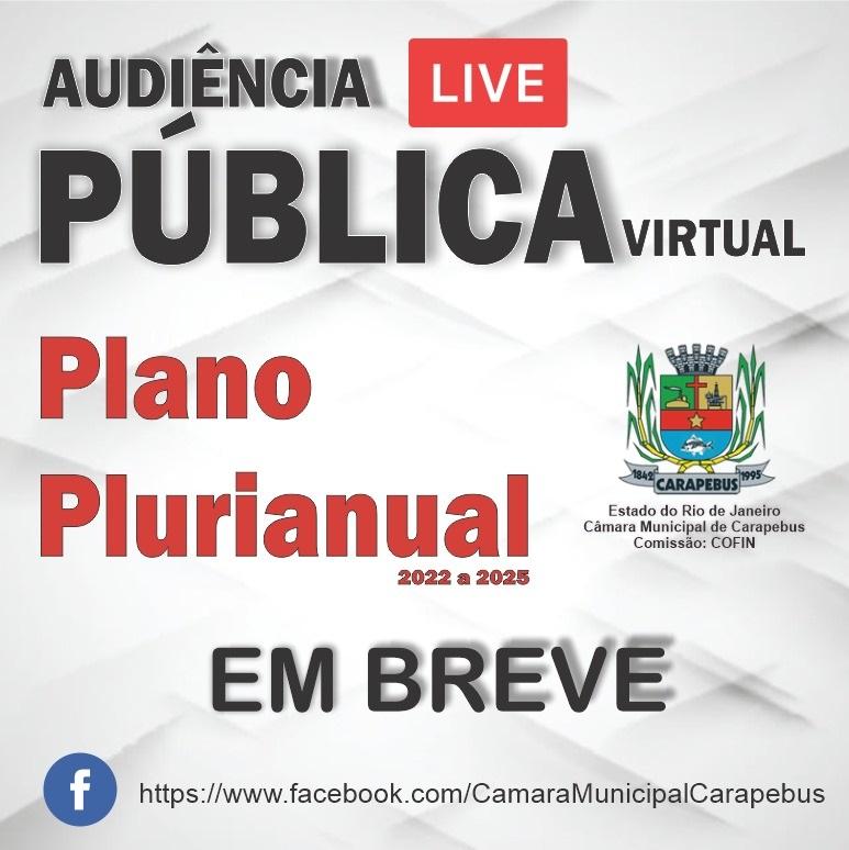 Audiência Pública Virtual da PPA