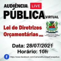 Audiência Pública Virtual - LDO 2022