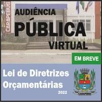 Audiência Pública Virtual - LDO 2022 (EM BREVE)